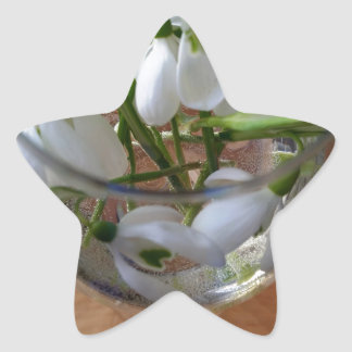 glass of snowdrops star sticker