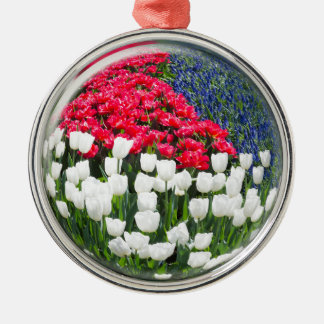 Glass sphere reflecting red white tulips and blue Silver-Colored round ornament