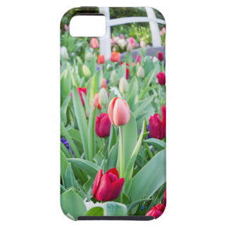 Glass sphere reflecting tulips flowers iPhone 5 covers