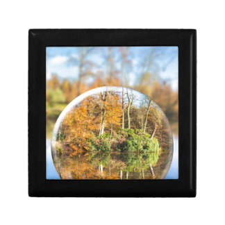Glass sphere with autumn nature reflection in it jewelry boxes