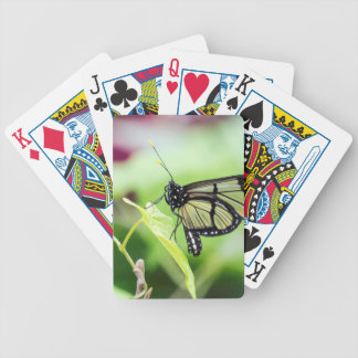 Glass Wing Butterfly Bicycle Playing Cards