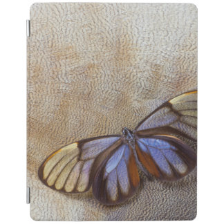 Glass-wing Butterfly Egyptian Goose Feather iPad Cover