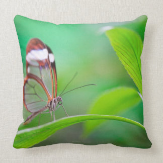 Glass wing butterfly relaxing on fresh green throw pillow