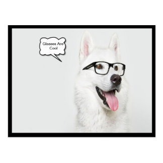 Glasses Are Cool Dog Postcard