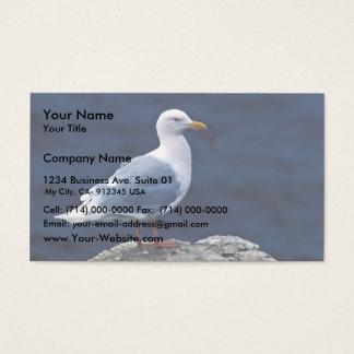 Glaucous Gull Business Card