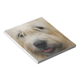 Glen of Imaal Terrier Notepad