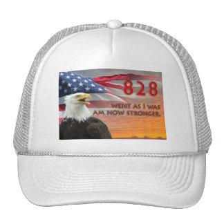 Glenn Beck Rally Hats