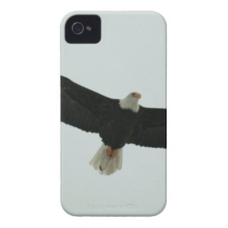 Gliding bald eagle Case-Mate iPhone 4 case
