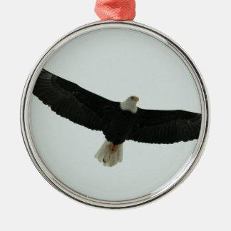 Gliding bald eagle Silver-Colored round ornament