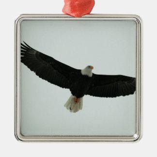 Gliding bald eagle Silver-Colored square ornament