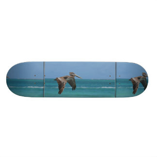 Gliding Pelican Skateboards