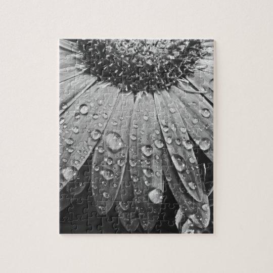 Glistening Rain Drops on Daisy Flower Jigsaw Puzzle