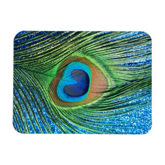 Glittery Blue Peacock Feather Still Life Magnets