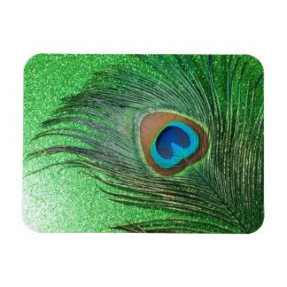 Glittery Green Peacock Feather Still Life Rectangle Magnets