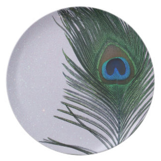 Glittery White Peacock Feather Still Life Dinner Plates