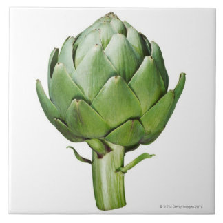Globe Artichoke on White Background Cut Out Tile