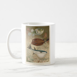 Globe Fish & Coffer Fish Bookstore Promo Coffee Mug