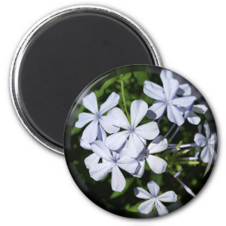 Globe of flowers 2 inch round magnet