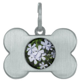 Globe of flowers pet tags