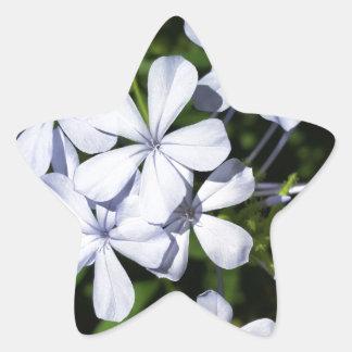 Globe of flowers star sticker