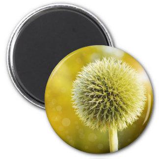 globe-thistle-599653 2 inch round magnet