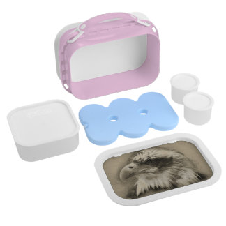 Glorious Bald Eagle Setch Lunch Boxes
