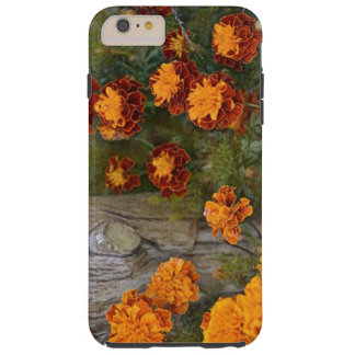 Glorious Marigolds Tough iPhone 6 Plus Case