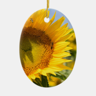 Glorious sunflowers! ceramic oval ornament