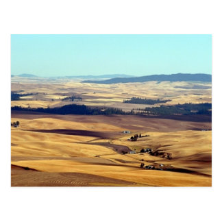 Glory of the Palouse Postcard