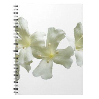 Glory Vine Flowers Notebooks