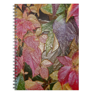 Glossy autumn leaves, Wax-Look 001.1 Notebooks
