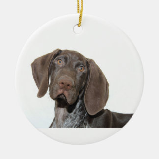 Glossy Grizzly Christmas Ornament