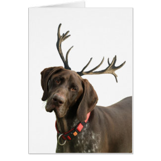 Glossy Grizzly Reindeer Pointer Card