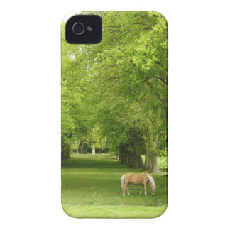 Gloucestershire, UK iPhone 4 Case