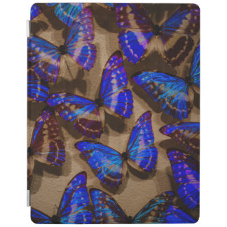 Glowing Butterfly Specimens iPad Cover