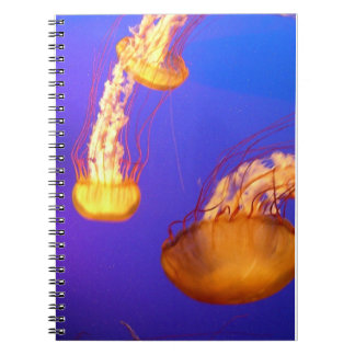 GLOWING JELLYFISH SPIRAL BOUND NOTEBOOK