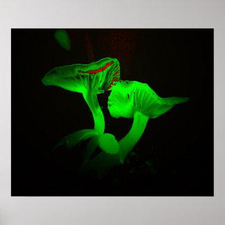 Glowing Mushrooms Poster