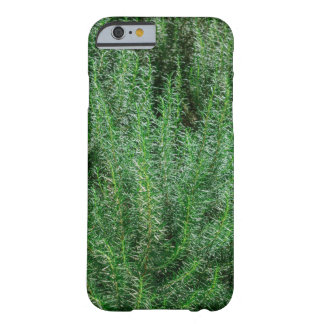 Glowing Rosemary Bushes Barely There iPhone 6 Case