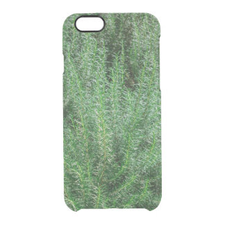 Glowing Rosemary Bushes Clear iPhone 6/6S Case