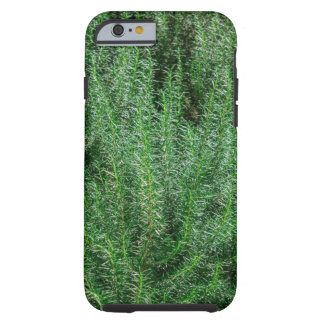 Glowing Rosemary Bushes Tough iPhone 6 Case