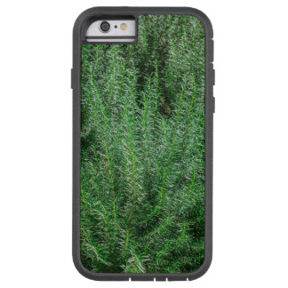 Glowing Rosemary Bushes Tough Xtreme iPhone 6 Case