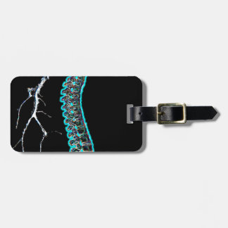 glowing spine askdrdoug luggage tag