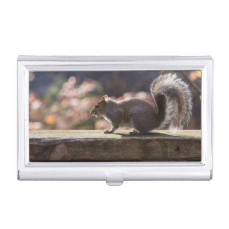 Glowing Squirrel Business Card Holder