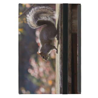 Glowing Squirrel Case For iPad Mini