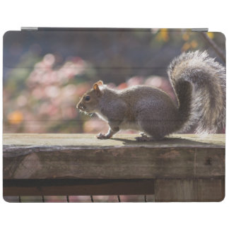 Glowing Squirrel iPad Cover