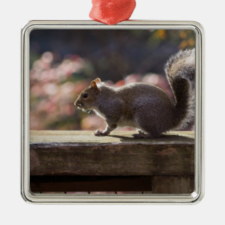 Glowing Squirrel Metal Ornament