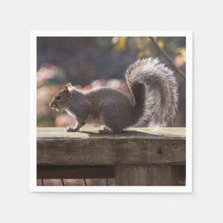 Glowing Squirrel Paper Napkin