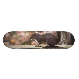 Glowing Squirrel Skate Board Deck
