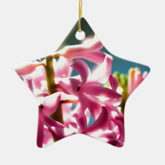 Glowing Sunlit Pink Hyacinth Blossoms Ceramic Star Ornament