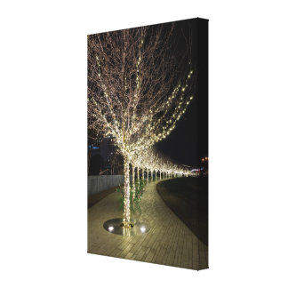 Glowing Trees Walkway Canvas Print